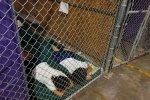 illigals kids in cages under Obama.jpg