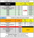 20-08-22 B1 - COVID vs Other Causes.jpg