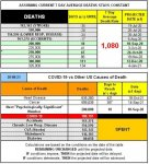 20-08-23 B1 - COVID vs Other Causes.jpg