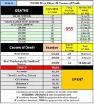 20-08-30 B1 - COVID vs Other Causes.jpg