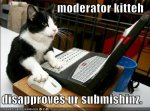 lolcat-funny-picture-moderator1.jpg