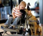 Dogs-Are-Better-Friends-Than-Humans.jpg