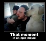 Funny-dog-That-moment-in-an-epic-movie.jpg