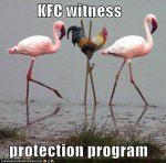 KFC Witness protection program.jpg