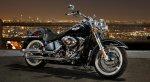DP Harley.jpg